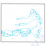 Kép 2/3 - Gyopár N6 terápiás támpárna.